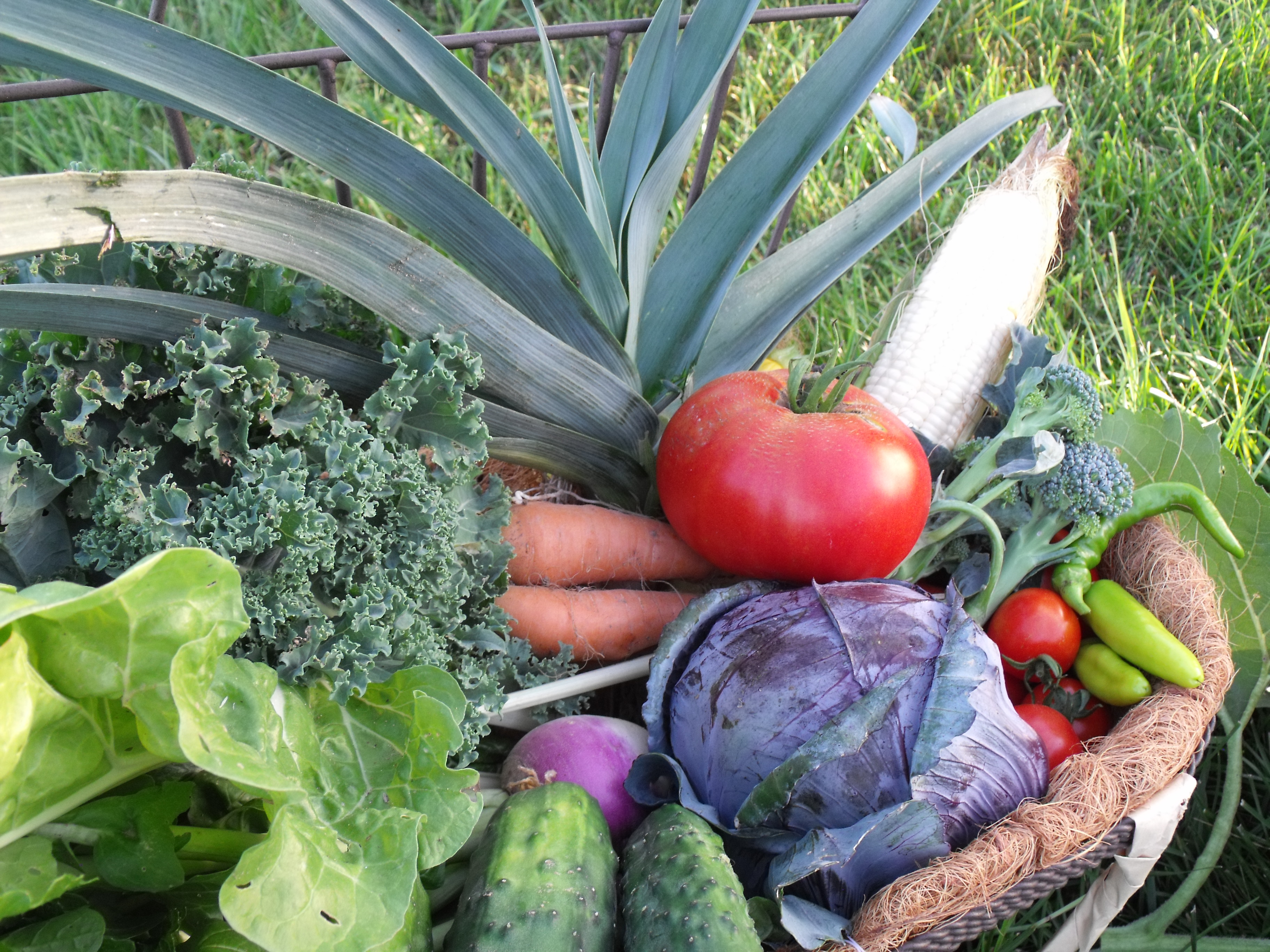 Halcyon Acres chemical-free produce in Roanoke