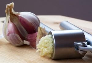 growing garlic at halcycon acres