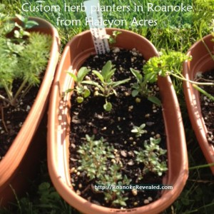 Get custom herb planters delivered free to you in Roanoke at http://HalcyonAcres.com