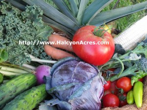Roanoke grown produce delivered right after it's picked to your door - all chemical-free..