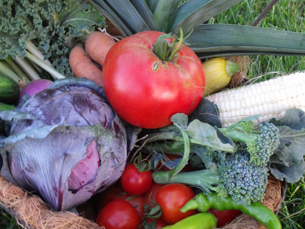 Roanoke produce delivery of chemical-free and hard-to-find locally grown items.